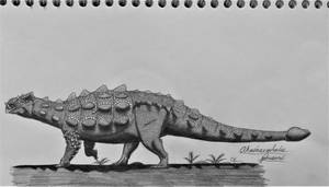 Akainacephalus johnsoni by AcroSauroTaurus