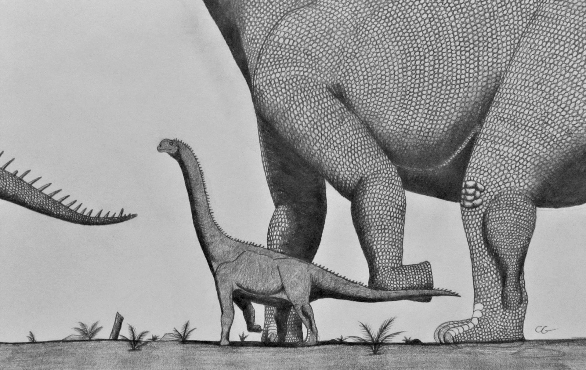 Daanosaurus zhangi