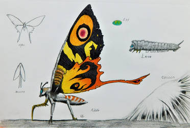 Kaiju: Mothra by AcroSauroTaurus