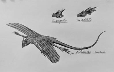Skull Island: Alatusaurus