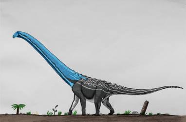 Rapetosaurus krausei