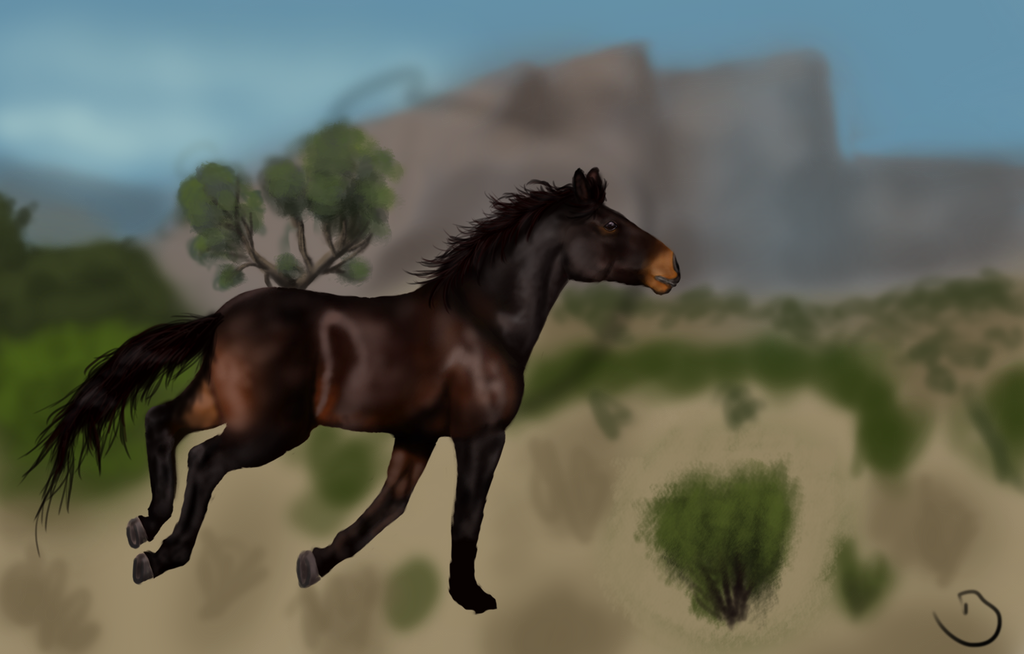Desert by Bluenighthorse