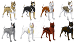 Pitbull Adoptables -Open-