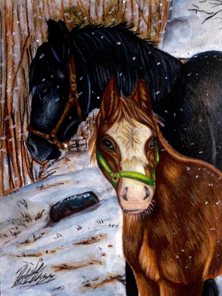 horses by pladywolf82