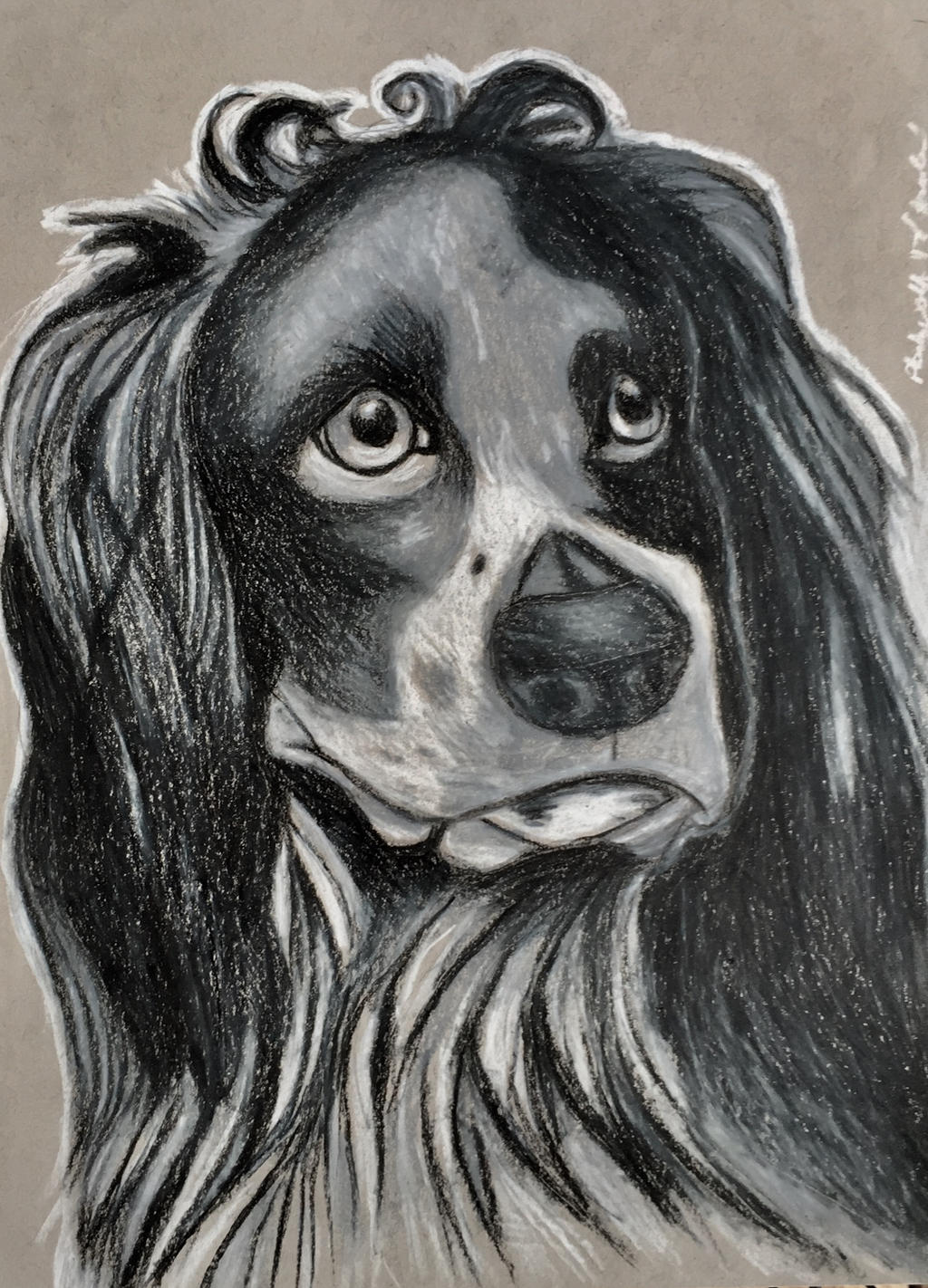 Cocker spaniel by pladywolf82