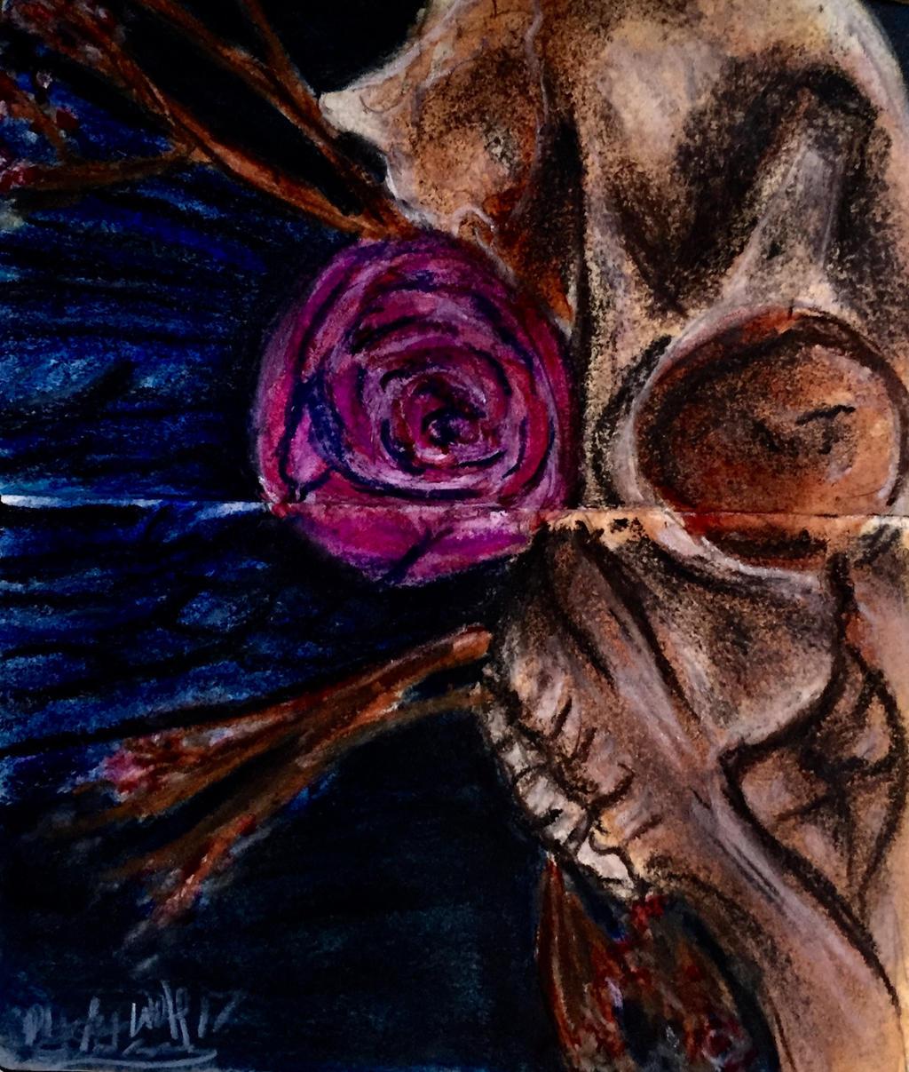 Doe skull by pladywolf82