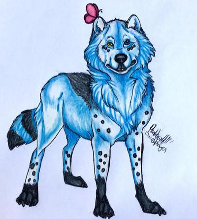Yuki by pladywolf82
