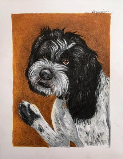 Dog portrait  by pladywolf82