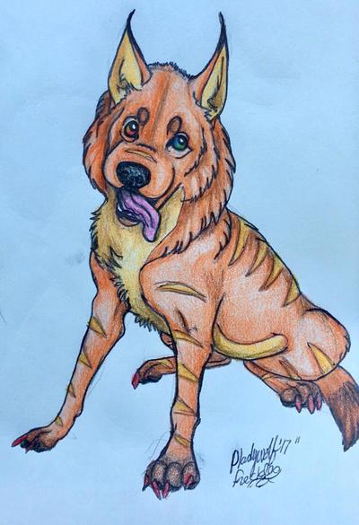 Freckles  by pladywolf82
