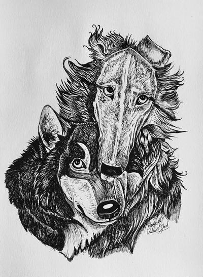Cicero and David  by pladywolf82