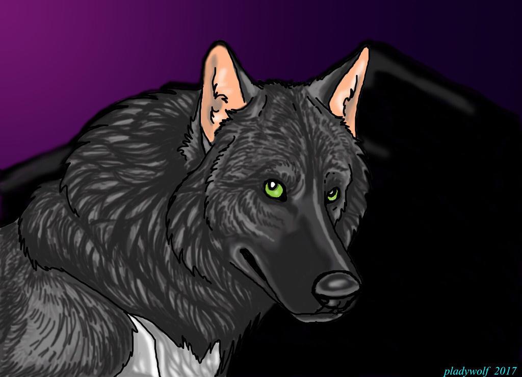 Wolf guardian  by pladywolf82