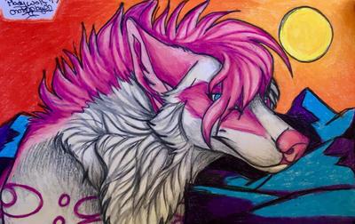 Diva by pladywolf82