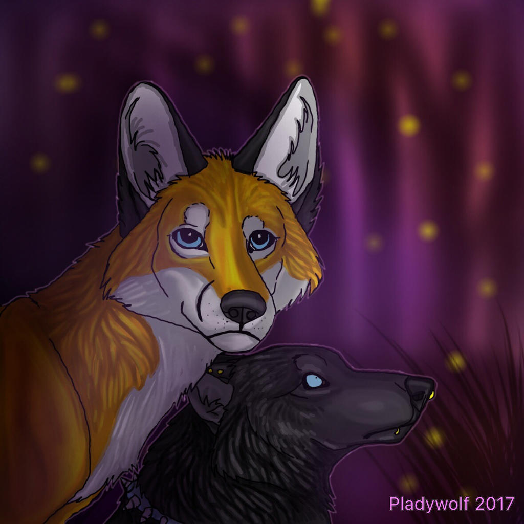 Night prowlers  by pladywolf82