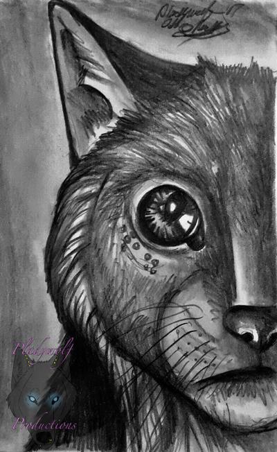 Nicky by pladywolf82
