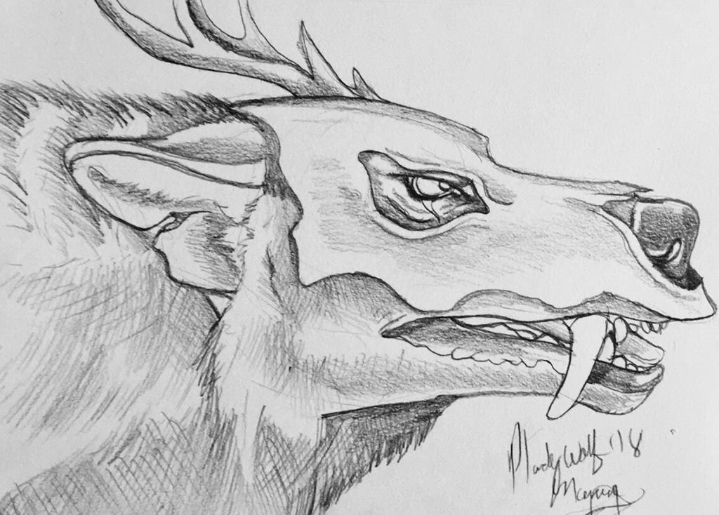 Macci by pladywolf82