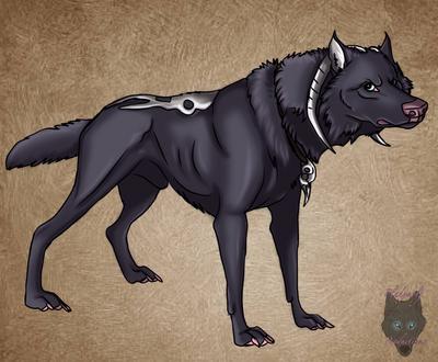 Puppy by pladywolf82