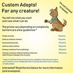 Get a custom adopt! (updated info sheet)