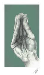 Hand study 6