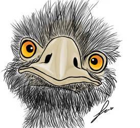 Ostrich head by Luiswalker