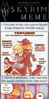 Meme - Skyrim 'Twinvahkiin'