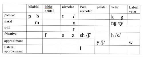 Tayanien phonetic inventory by thefirechicken