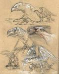 Griffin Heads
