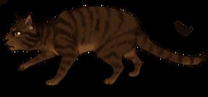 Crouching Tiger by Drekalder