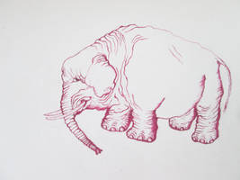 Sapporo Canvas Contest's  Pink Elephant
