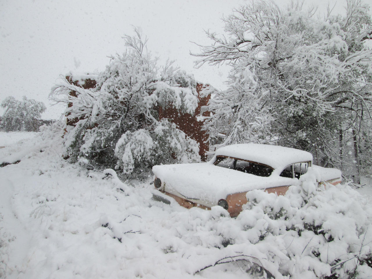 Spring snow in New Mexico