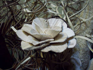 The Wooden Flower