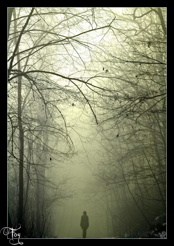 Fog by Flugcojt