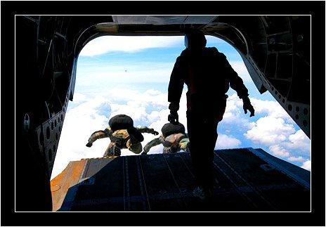 Airborne warrior by dendennism