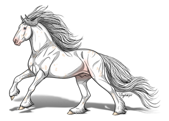 Amura -- Lone Stallion by TheRomanLioness