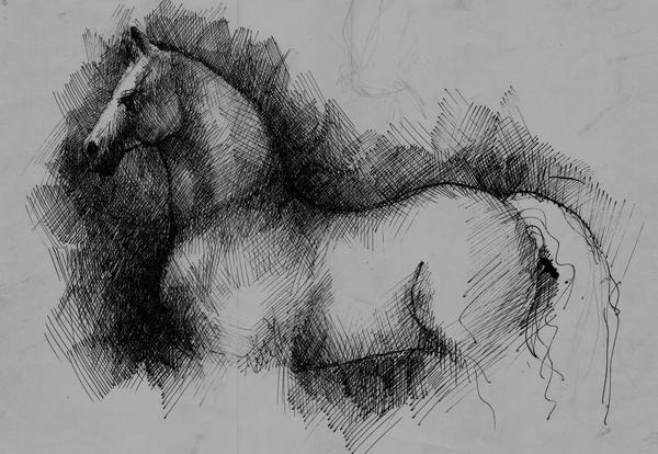 Estudo em naquim para cavalo by RembrandtReload