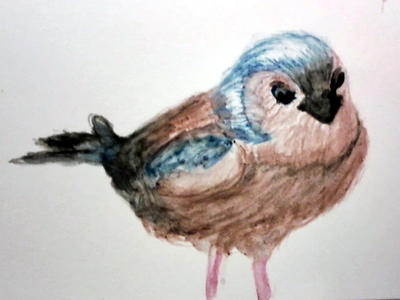 Little Bird by zebarnabe
