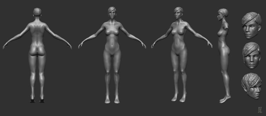 Female Anatomy Study By Mrninjutsu On Deviantart