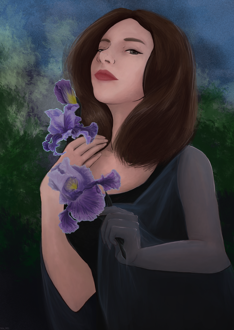 The Iris by Nils991