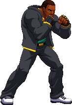 Pixel Commish - The Stray