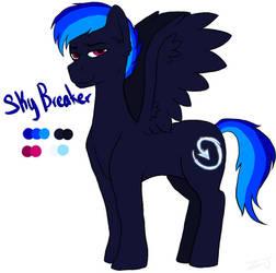 Sky Breaker