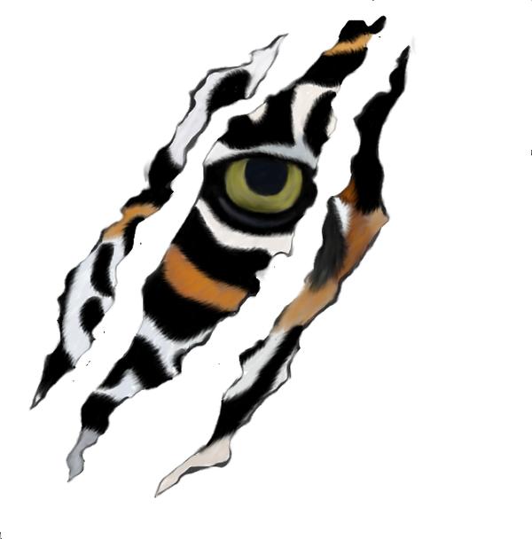 tiger scratch by maineac92 on deviantart. Black Bedroom Furniture Sets. Home Design Ideas