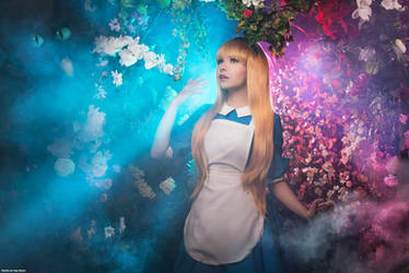 Alice in Wonderland by TimFowl