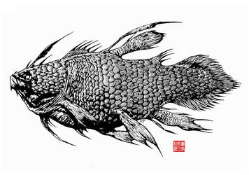 COELACANTH by MECHAGOZILLA
