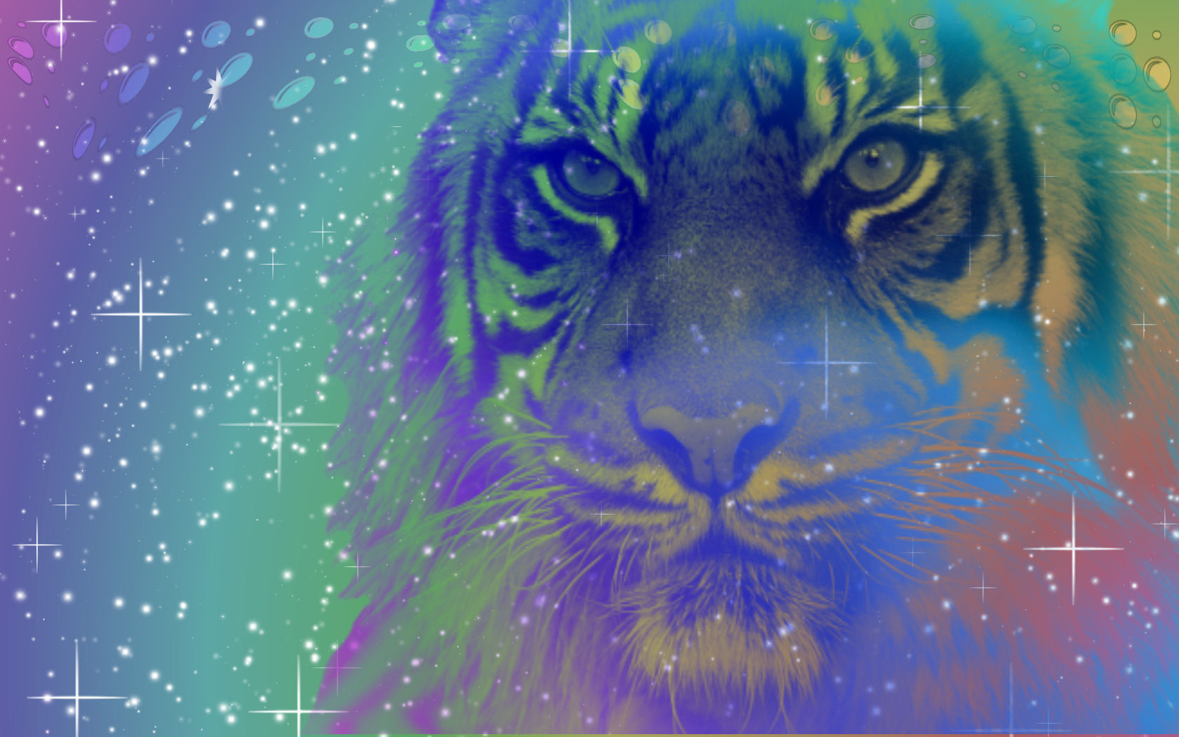 Sookie Tiger Wallpaper By Sookiesooker