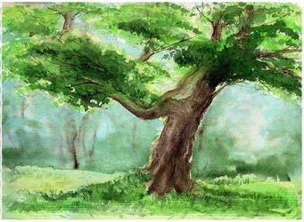 Oak by ebver