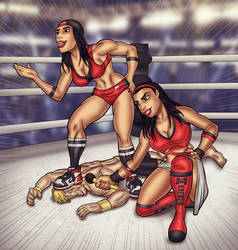 Bella Twins in action 2