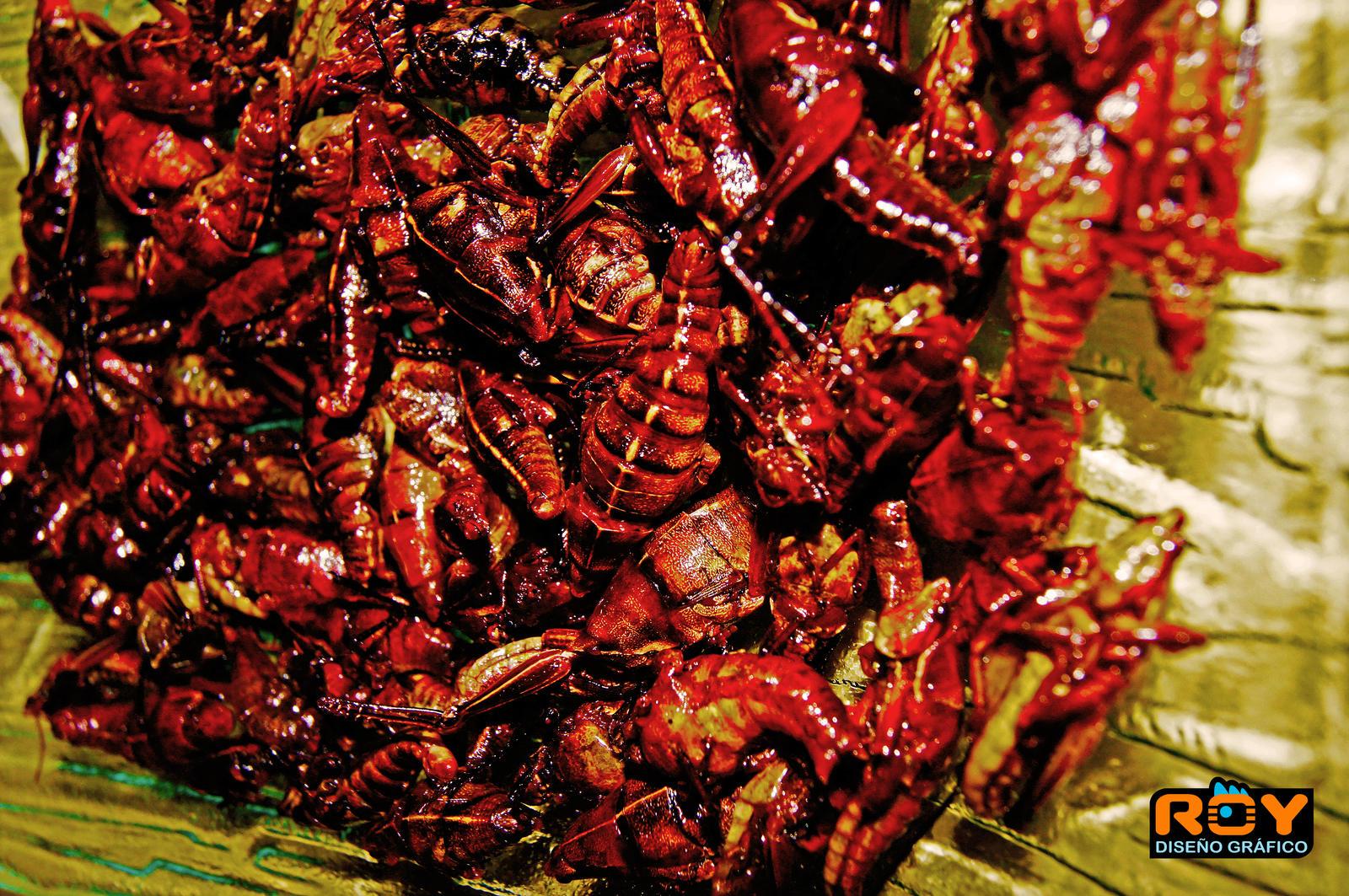 Delicious Mexican Food Tumblr delicious mexican food...