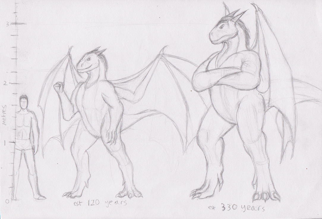 Draconis Size Comparisons by Spacer176