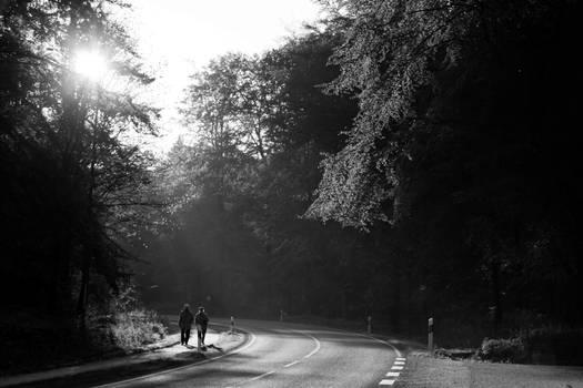 Light Walk