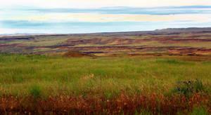 Roadside Columbia Basin - Background