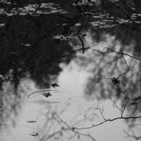 Silence. by immugraah